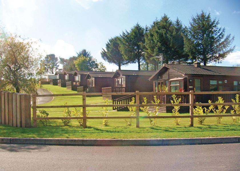 Saundersfoot Country Park, Saundersfoot,Pembrokeshire,Wales